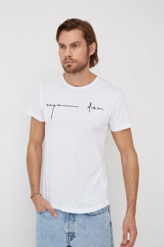 Мужская футболка с фактурным принтом 17-315100